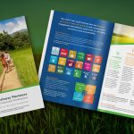 United States Council for International Business - Business Partners for Sustainable Development Brochure